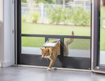 Katzenklappe im Fliegengitter