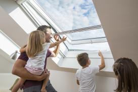 Insektenschutzgitter für Dachfenster