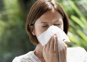 Pollenschutz nach Maß