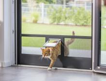 Katzenklappen für Fliegentüre