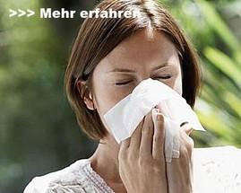 Pollenschutzgitter, Polltec von Neher-Insektenschutz