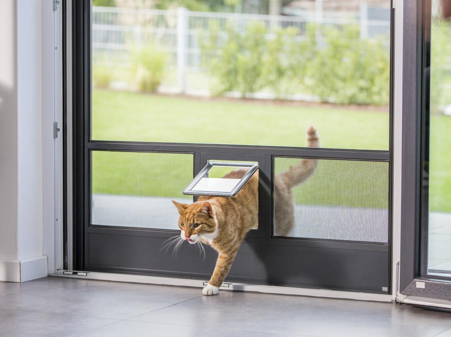 Katzenklappe für Fliegengitter